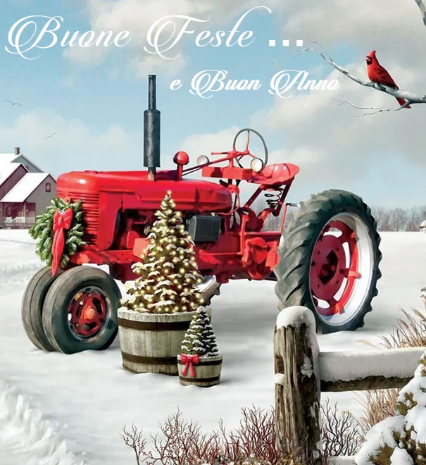 Buone Feste e Buon Anno da Zarantonello Lino & C snc